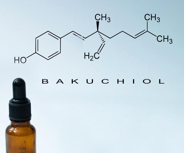 バクチオール bakuchiol