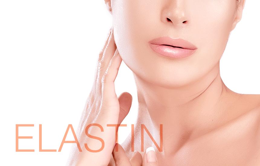 「肌にハリを与えるエラスチンとは何か?徹底解説」を掲載いたしました。